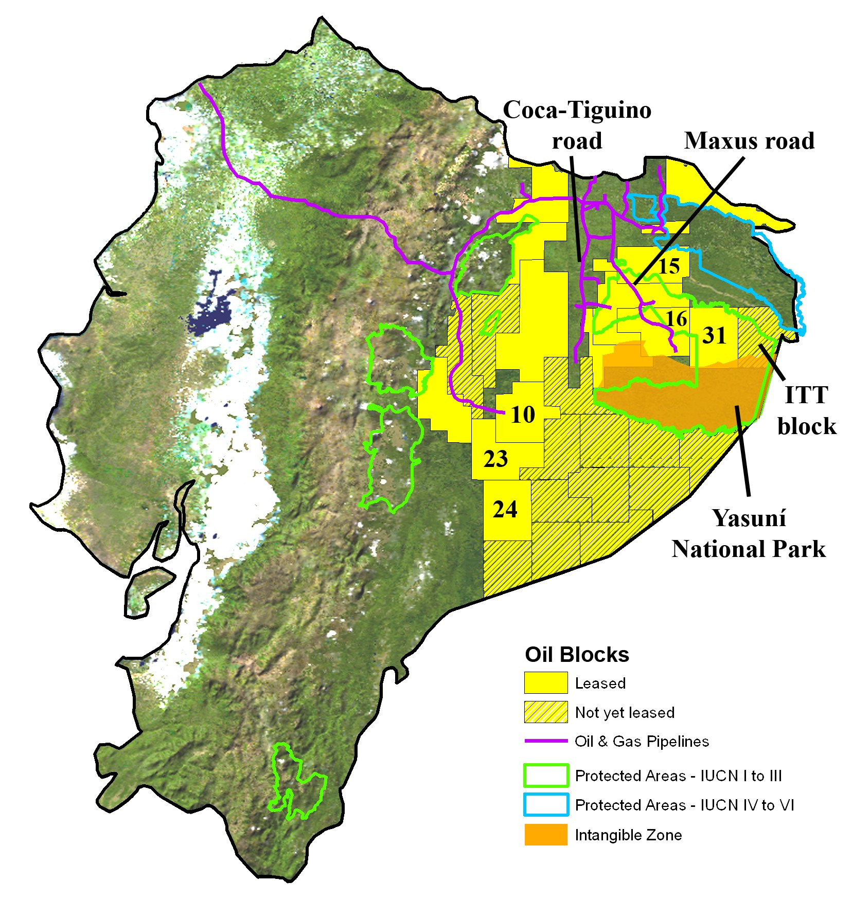 of oil blocks and biodiversity in the western amazon